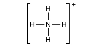 A Lewis structure shows a nitrogen atom single bonded to four hydrogen atoms. The structure is surrounded by brackets with a superscripted positive sign.