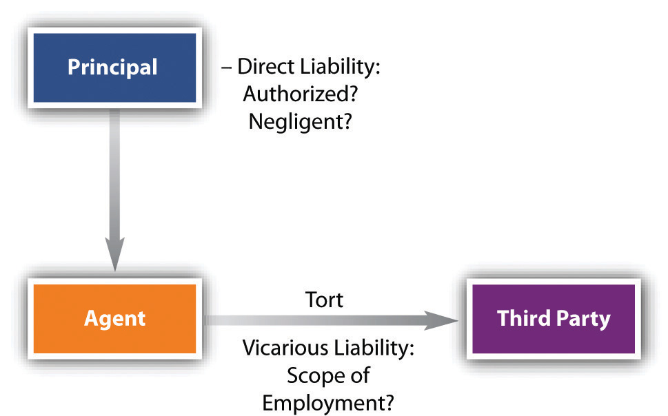 Chart showing tort liability in agency law