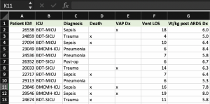 Example dataset in Microsoft Excel(TM) outlining data collected about patient diagnosis and variables including location, mortality, incidence of ventilator associated pneumonia, and tidal volume delivered following a diagnosis of ARDS