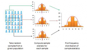 Describes the frequency distribution for random sampling